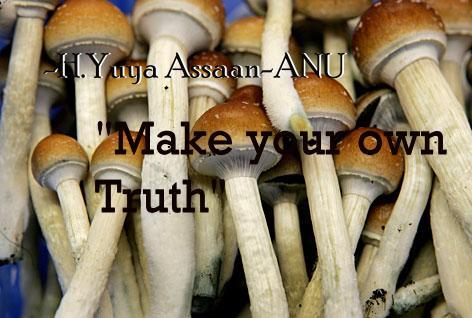 Kilindi and the Magic Mushroom